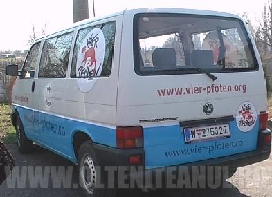 """Reprezentantii Vier Photen au vizitat astazi adapostul """"Azorel"""""""