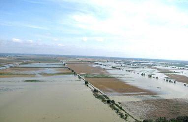 culturi-inundate